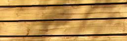 150 x 22 x 4.8MT TANALISED TIMBER FENCE BOARD